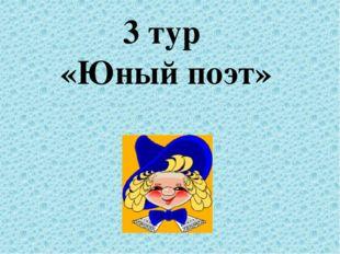 3 тур «Юный поэт»