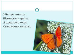 3.Четыре лепестка Шевелились у цветка. Я сорвать его хотел, Он вспорхнул и ул