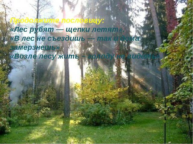 Продолжите пословицу: «Лес рубят — щепки летят». «В лес не съездишь — так и д...
