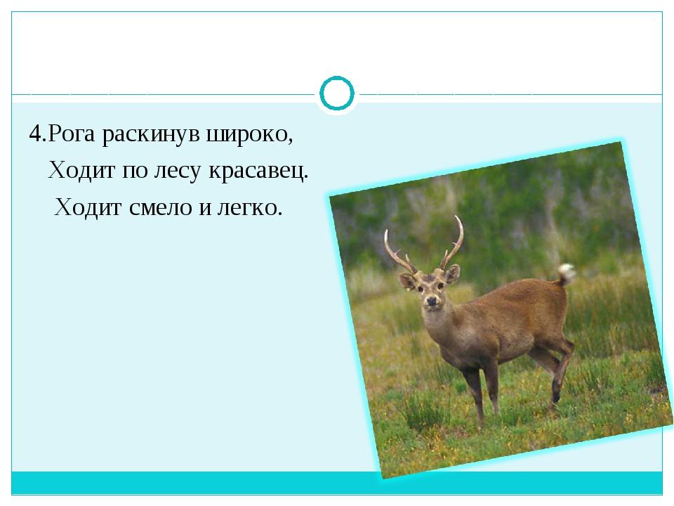 4.Рога раскинув широко, Ходит по лесу красавец. Ходит смело и легко.