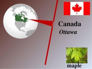 Canada Ottawa maple