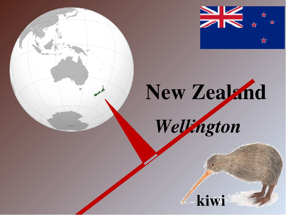 New Zealand Wellington kiwi