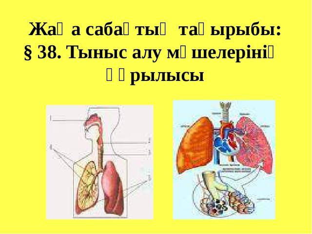 Жаңа сабақтың тақырыбы: § 38. Тыныс алу мүшелерінің құрылысы
