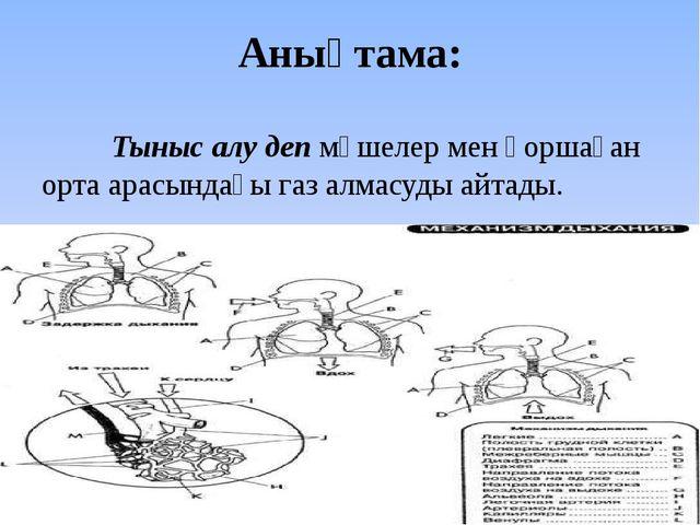 Анықтама: Тыныс алу деп мүшелер мен қоршаған орта арасындағы газ алмасуды а...