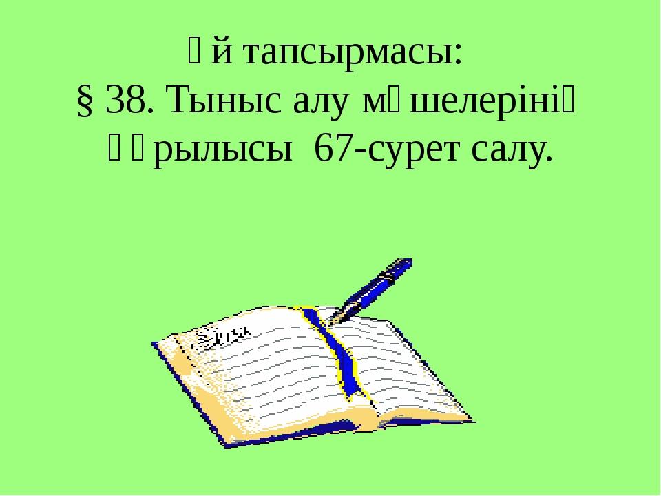 Үй тапсырмасы: § 38. Тыныс алу мүшелерінің құрылысы 67-сурет салу.
