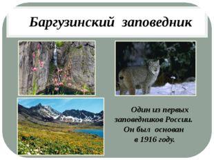 Баргузинский заповедник Один из первых заповедников России. Он был основан в