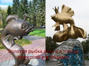 Золотая рыбка есть и в городе Кемерово и в Абакане
