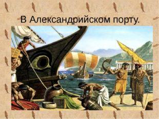 В Александрийском порту.