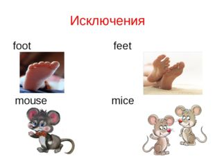 Исключения foot feet mouse mice