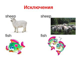Исключения sheep sheep fish fish
