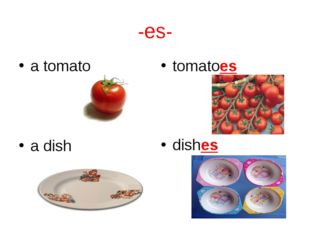-es- a tomato tomatoes a dish dishes