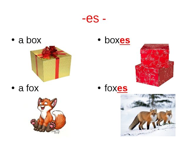 -es - a box boxes a fox foxes