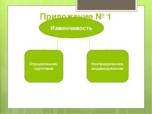 Приложение № 1  Изменчивость Определенная, групповая Неопределенная, индивид