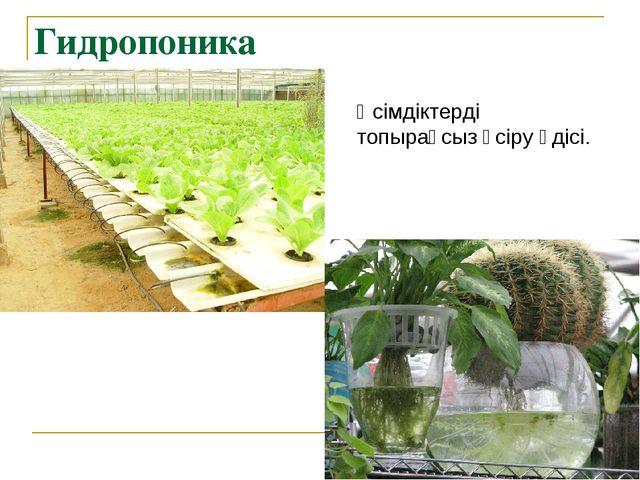 Гидропоника Өсімдіктерді топырақсыз өсіру әдісі.
