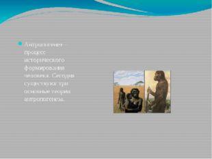 Антропогенез— процесс исторического формированиячеловека. Сегодня существую