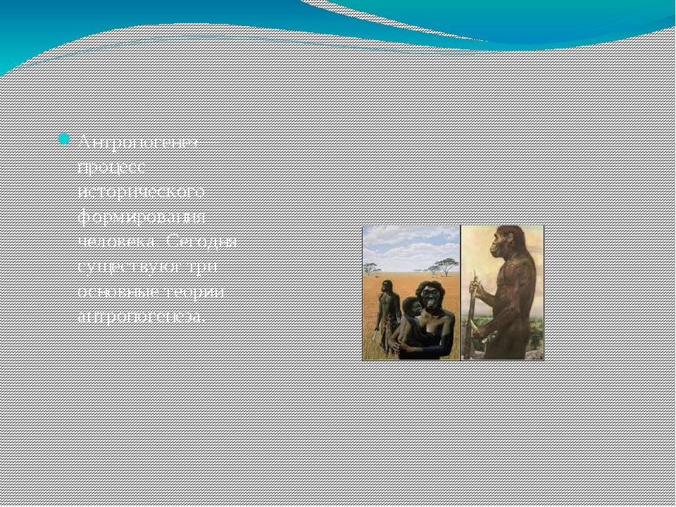 Антропогенез— процесс исторического формированиячеловека. Сегодня существую...
