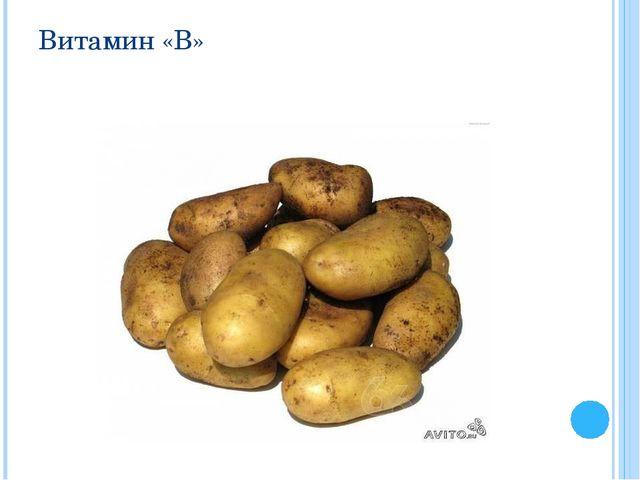Витамин «В»