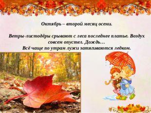Октябрь – второй месяц осени. Ветры-листодёры срывают с леса последнее платье