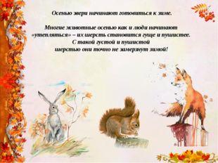 Осенью звери начинают готовиться к зиме. Многие животные осенью как и люди на