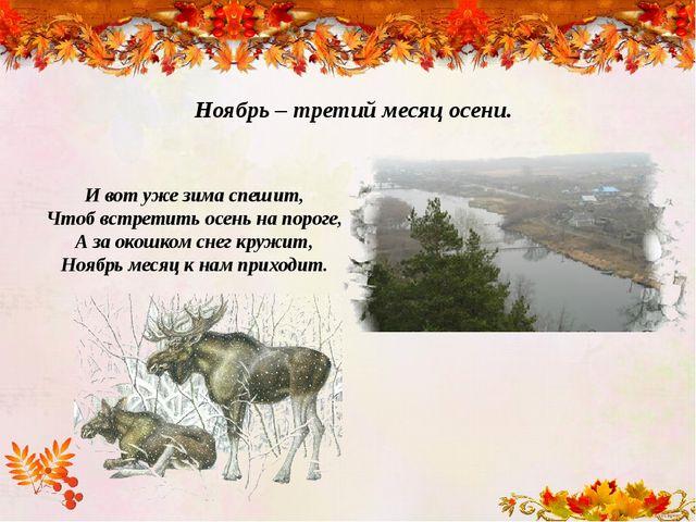 Ноябрь – третий месяц осени. И вот уже зима спешит, Чтоб встретить осень на п...