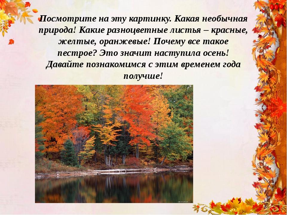 Посмотрите на эту картинку. Какая необычная природа! Какие разноцветные листь...