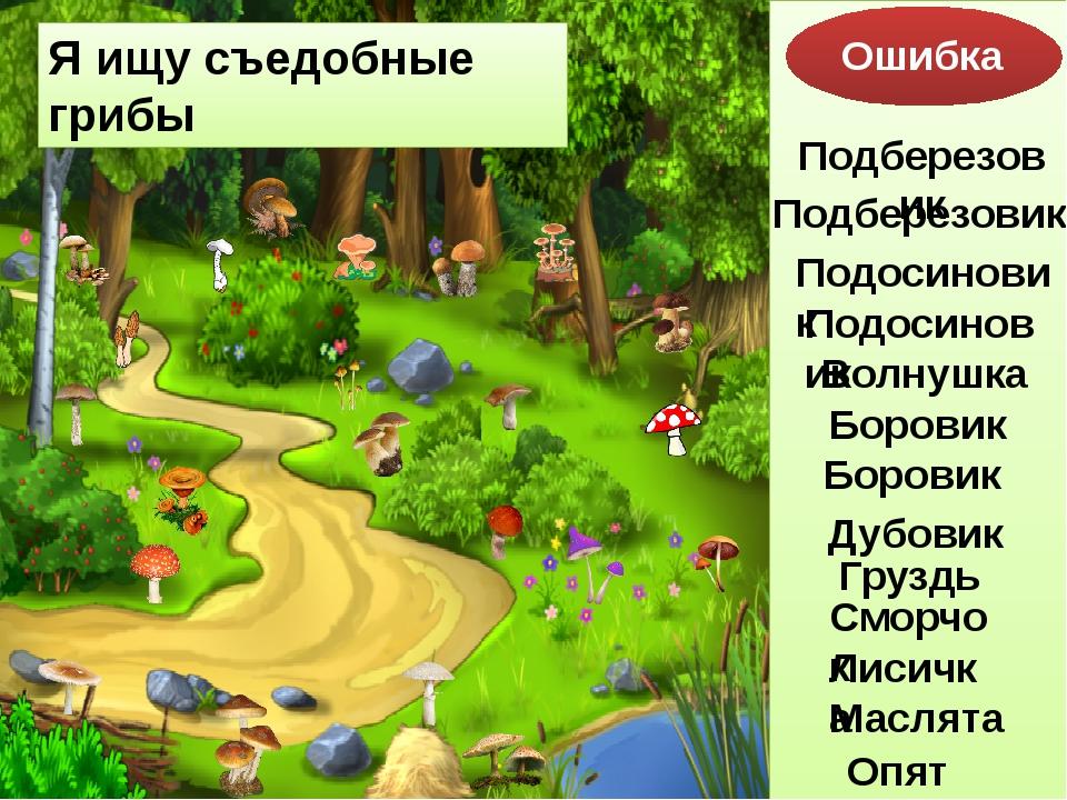 Я ищу съедобные грибы Ошибка Подберезовик Подосиновик Боровик Дубовик Груздь...