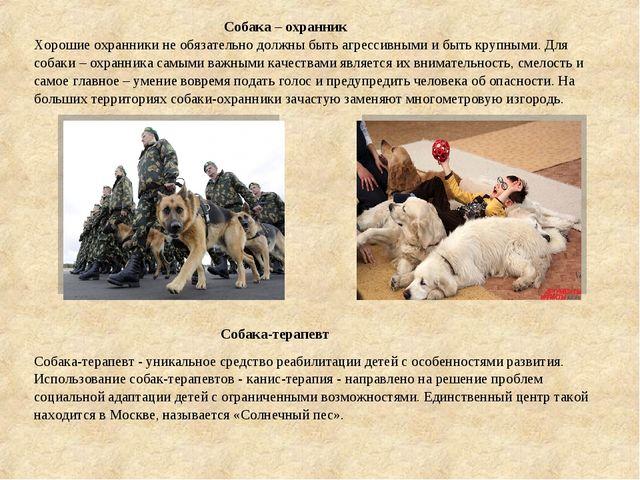 Собака – охранник Хорошие охранники не обязательно должны быть агрессивными...