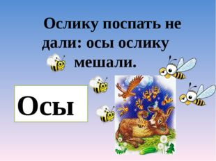 Ослику поспать не дали: осы ослику мешали. Осы