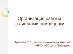 Пунегова Е.В., учитель начальных классов МБОУ «СОШ» с.Пыёлдино Организация ра