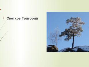 Снетков Григорий
