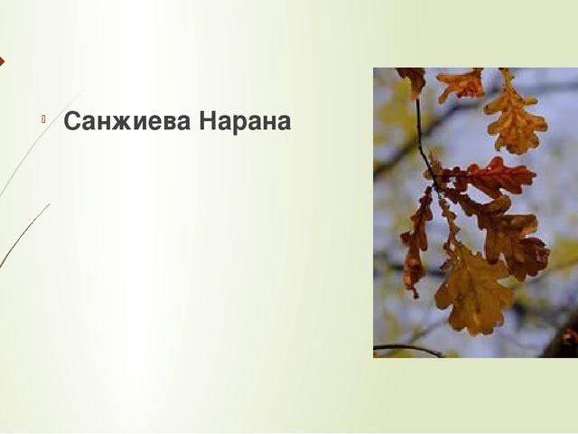 Санжиева Нарана