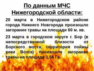 По данным МЧС Нижегородской области: 20 марта в Нижегородском районе города Н