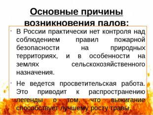 Основные причины возникновения палов: В России практически нет контроля над с