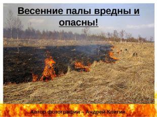 Автор фотографии – Андрей Клитин. Весенние палы вредны и опасны! http://i.sak