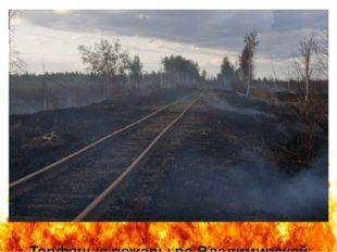 Торфяные пожары во Владимирской области (автор фотографии - Мария Васильева).