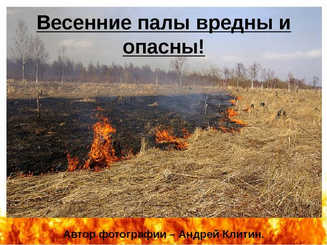 Автор фотографии – Андрей Клитин. Весенние палы вредны и опасны! http://i.sak...