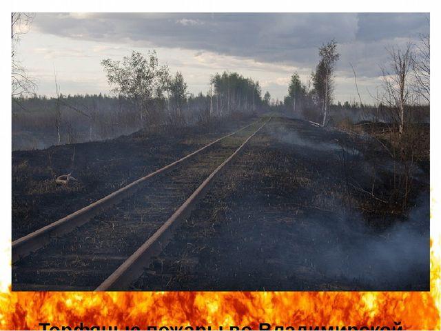 Торфяные пожары во Владимирской области (автор фотографии - Мария Васильева)....