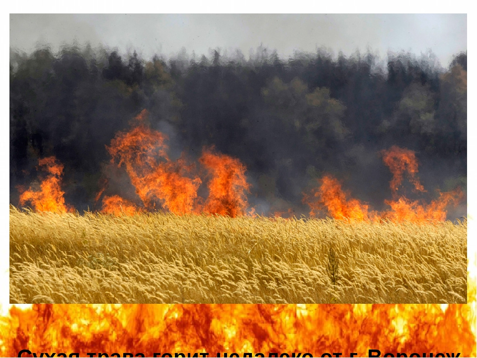 Сухая трава горит недалеко от г. Воронеж (автор фотографии – Михаил Метцель)....