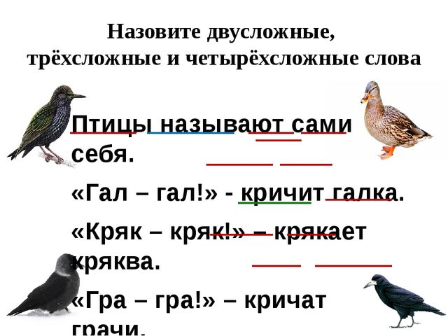 Назовите двусложные, трёхсложные и четырёхсложные слова Птицы называют сами с...