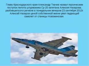 Глава Краснодарского края Александр Ткачев назвал героическим поступок пилота