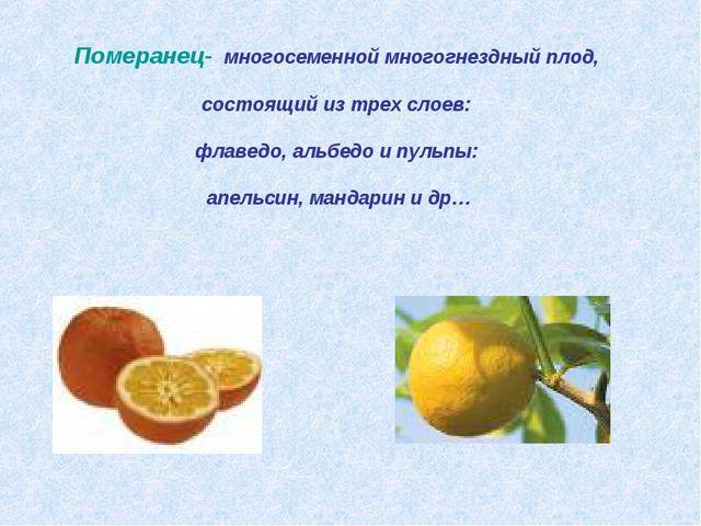 Померанец- многосеменной многогнездный плод, состоящий из трех слоев: флавед...