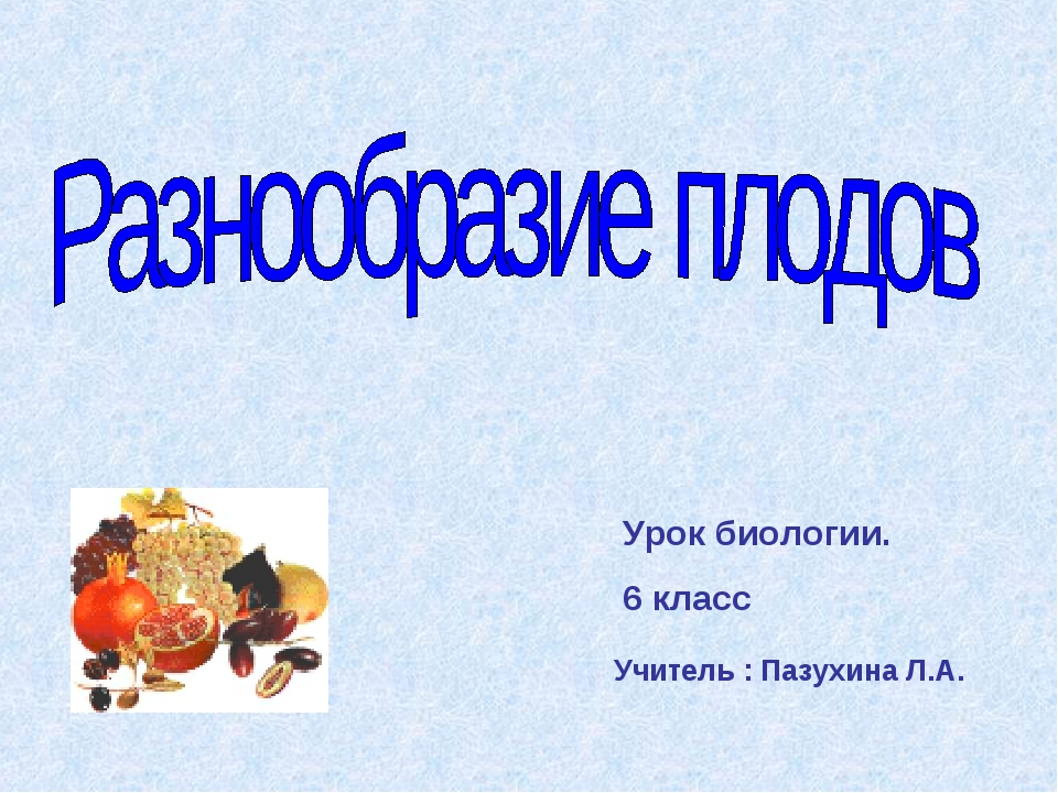 Урок биологии. 6 класс Учитель : Пазухина Л.А.