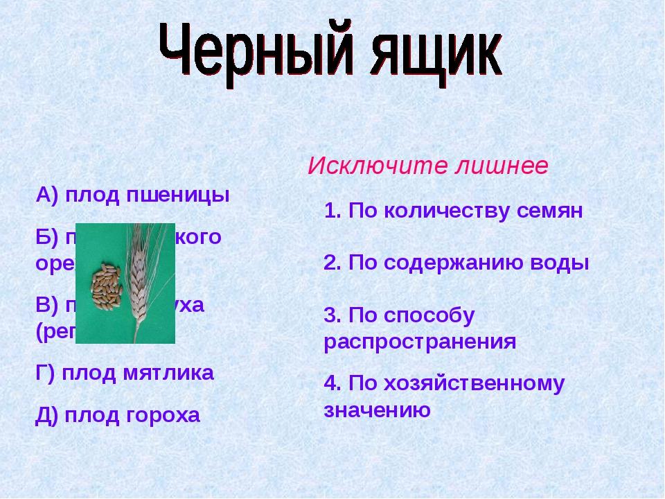 А) плод пшеницы Б) плод грецкого ореха В) плод лопуха (репейника) Г) плод мят...