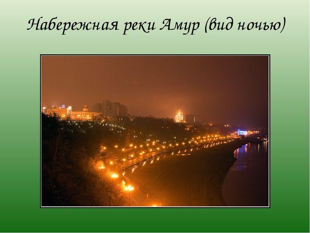 Набережная реки Амур (вид ночью)