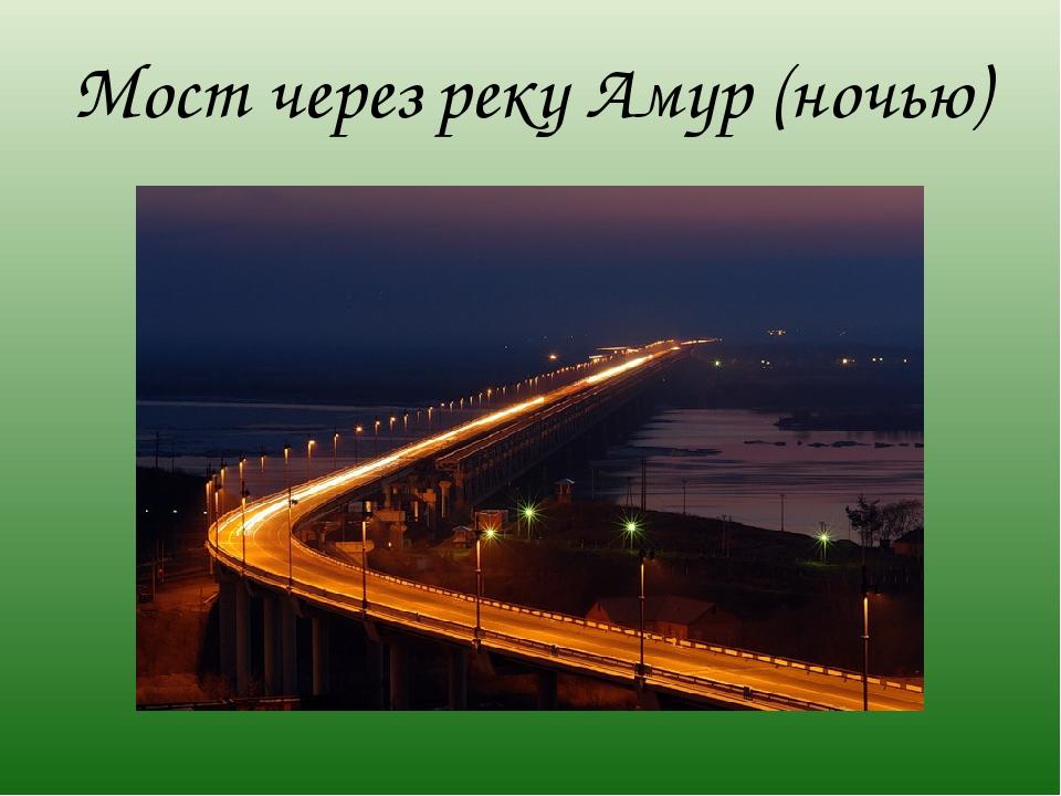 Мост через реку Амур (ночью)