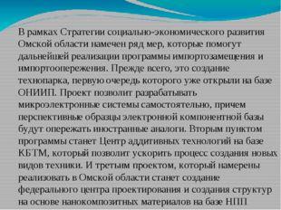 В рамках Стратегии социально-экономического развития Омской области намечен р