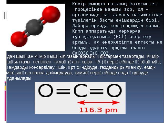 Көмір қышқыл газыныңфотосинтезпроцесінде маңызы зор, ол – организмде зат ал...