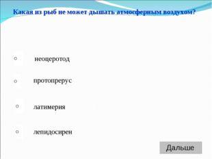 латимерия протопрерус лепидосирен неоцеротод Какая из рыб не может дышать атм