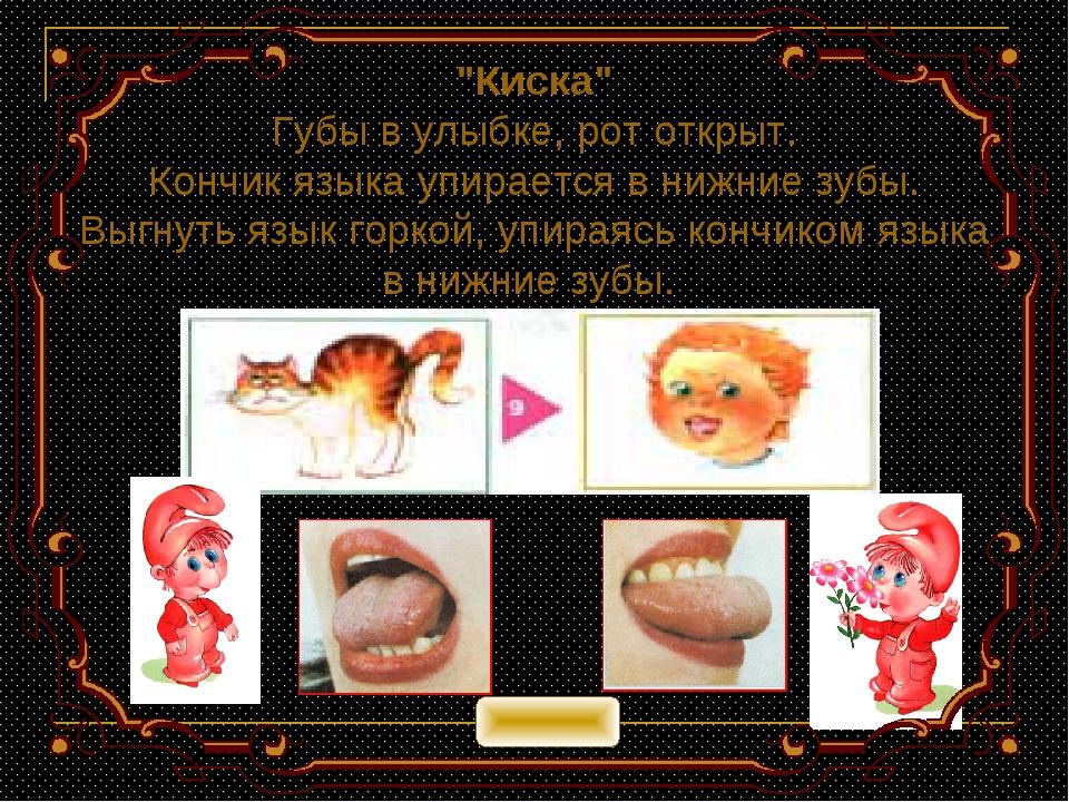 """""""Киска"""" Губы в улыбке, рот открыт. Кончик языка упирается в нижние зубы. Выгн..."""