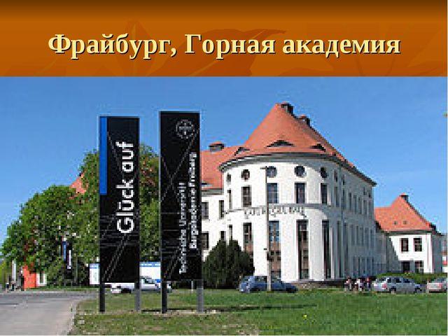Фрайбург, Горная академия
